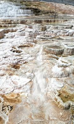 Mammoth Hot Springs Yellowstone National Pa