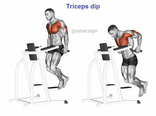 Triceps dips workout