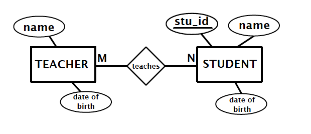 Database: Entity Relationship Diagram(ERD)