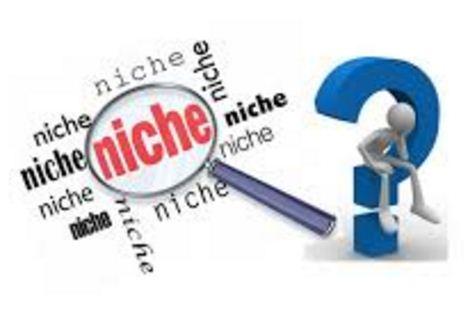 Hasil gambar untuk Tips blog niche