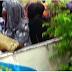 Boko Haram leader Threatens to Turn Captured female police officers into slaves in Maiduguri [video]