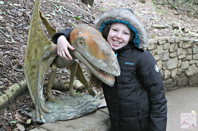 Wildlife and Dinosaur Park Devon review - Minxy with a pterodactyl