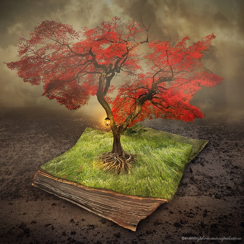 06-Knowledge-Even-Liu-Surreal-Photo-Manipulations-and-the-Lantern-www-designstack-co