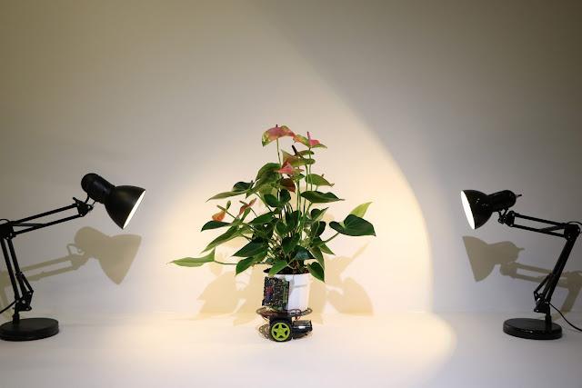Robotic Hybrid Plants