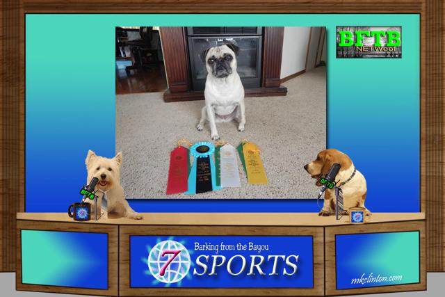 BFTB NETWoof Sports spotlights Mabel the Idaho Pug