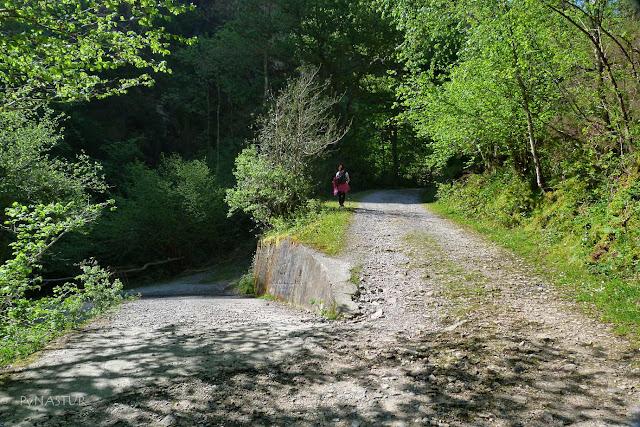 Desvío hacia el Vízcares - Piloña - Asturias