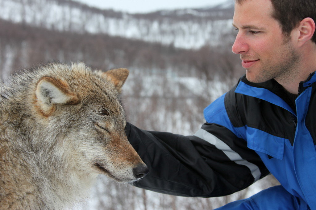Kissing Wolves at Wolf Park.Photo: © NorthernNorway.com.