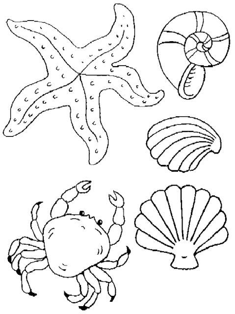 Gambar Mewarnai Binatang Laut - 10