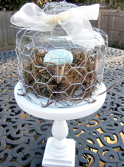 Glass cloche with chicken wire, bow and nest inside