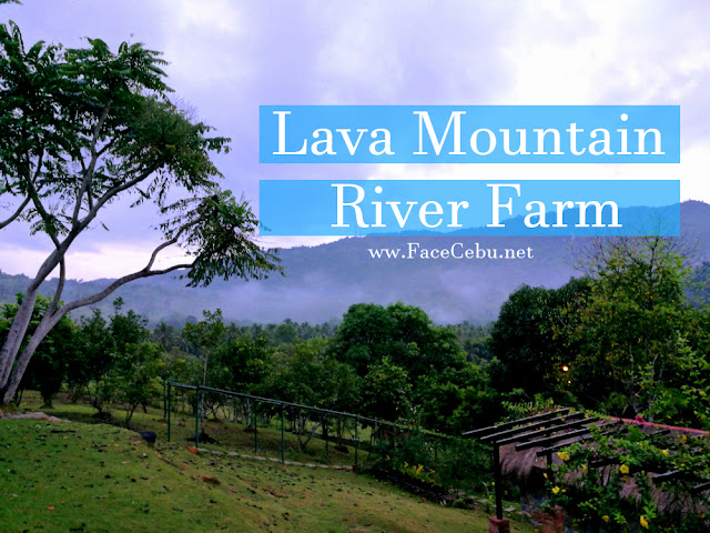 Lava Mountain River Farm by FaceCebu