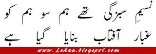 Naseem e Sabzgi The Hum So Hum Ko  Ghubar e Aaftab Farmaya Gaya Hai