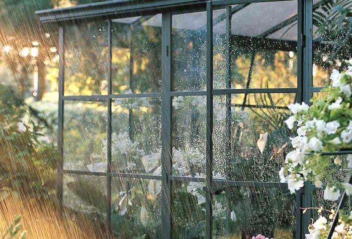 Sognando un giardino d'inverno
