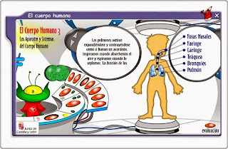 http://www.educa.jcyl.es/zonaalumnos/es/recursos/aplicaciones-infinity/aplicaciones/conoce-cuerpo-humano