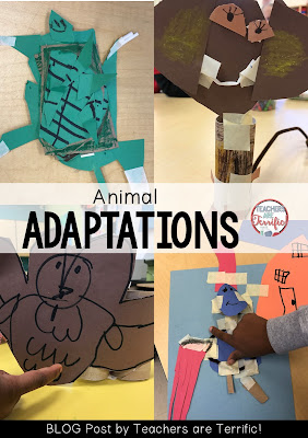 STEM Challenge: Build animals that had a special body part that does something that animal needs! Check this blog post for more!