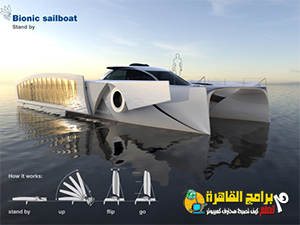 Bionic Sailboat