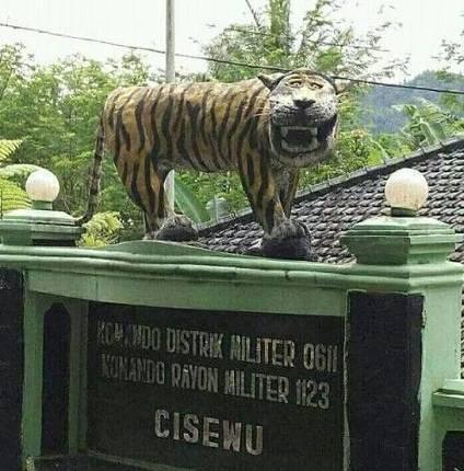 Macan Lucu Cisewu Muncul Di Komik Marvel Plus Sejarah Munculnya Viral Macan Cisewu