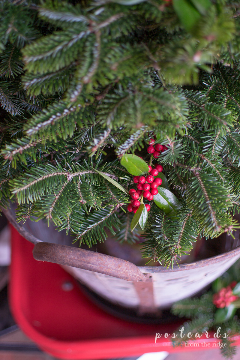 Love the tree in the olive bucket. Lots of other great Christmas porch decorating ideas on this site.