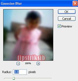 cara-membuat-efek-foto-blur-dengan-photoshop
