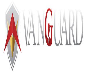 Sale Executive VanGuard