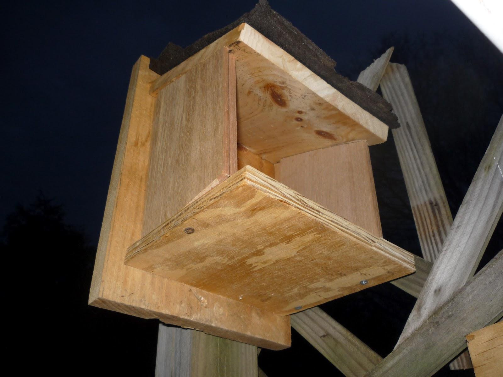 Woodwork Mourning Dove Nesting Platform Pdf Plans