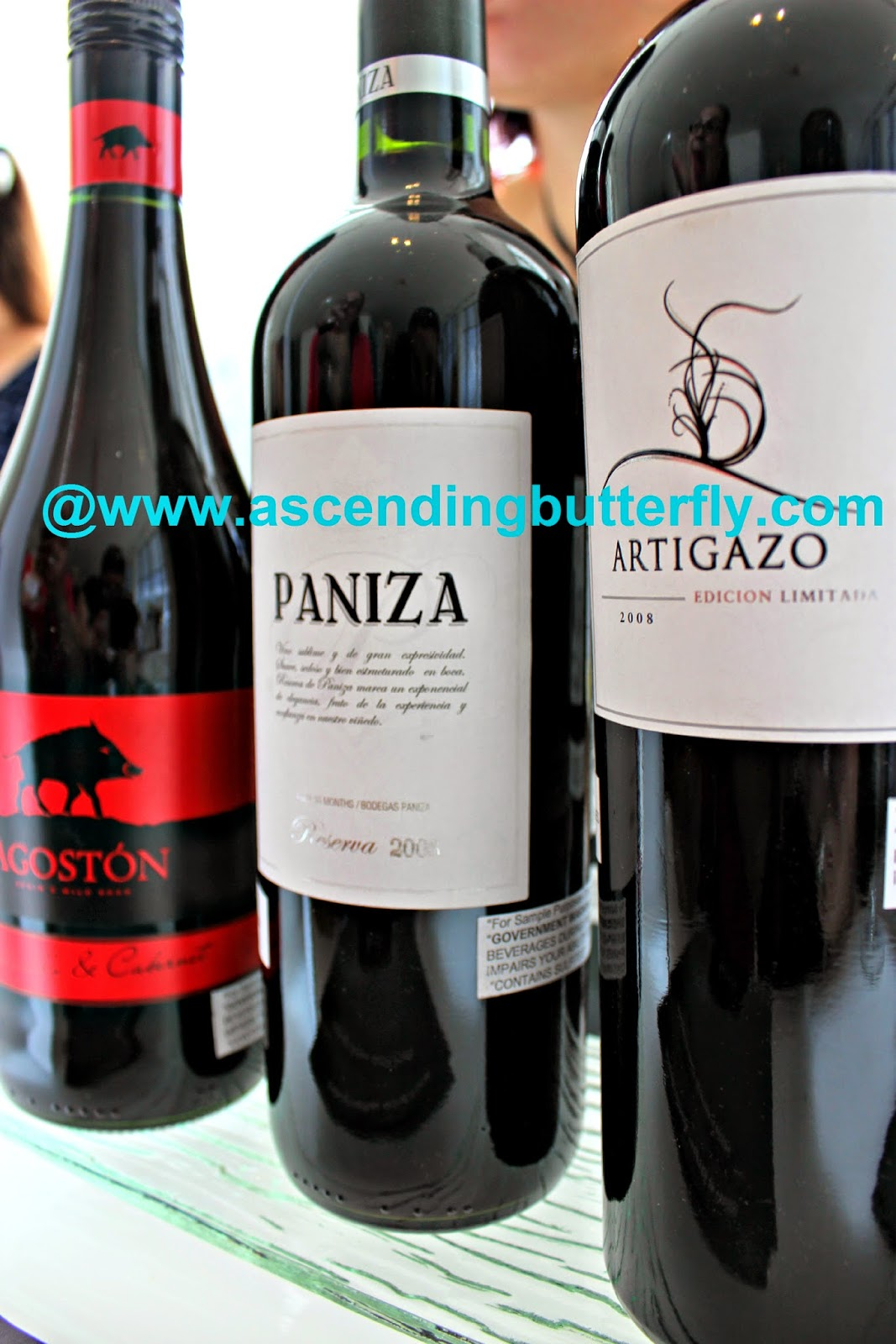 Agoston, Paniza, artigazo, Wines from Spain