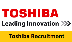 Job Toshiba japan