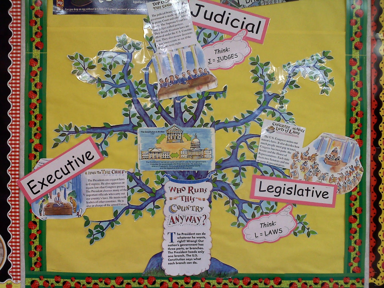 Miss Liefer S 4th Grade Class Three Branches Of Government