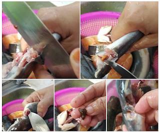 Hilangkan Bau Hanyir Ikan Keli