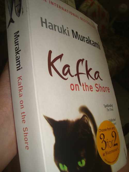 A review of kafkas the judgement