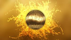 Bitcoin value WARNING THIS error will CRIPPLE bitcoin as cryptocurrency pioneer-CEO