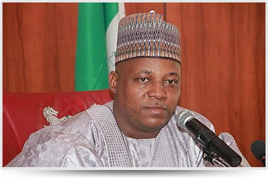 Shettima confirms Buhari's choice for Senate Presidency