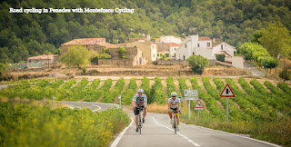 Roadcycling in Penedes (Barcelona)