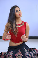 Telugu Actress Nishi Ganda Stills in Red Blouse and Black Skirt at Tik Tak Telugu Movie Audio Launch .COM 0127.JPG