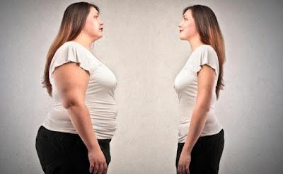 Apakah Gemuk Selalu Identik Dengan Tidak Sehat?