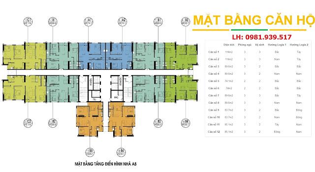 Mặt bằng tòa A8 chung cư An Bình City (bấm vào xem rõ hơn)