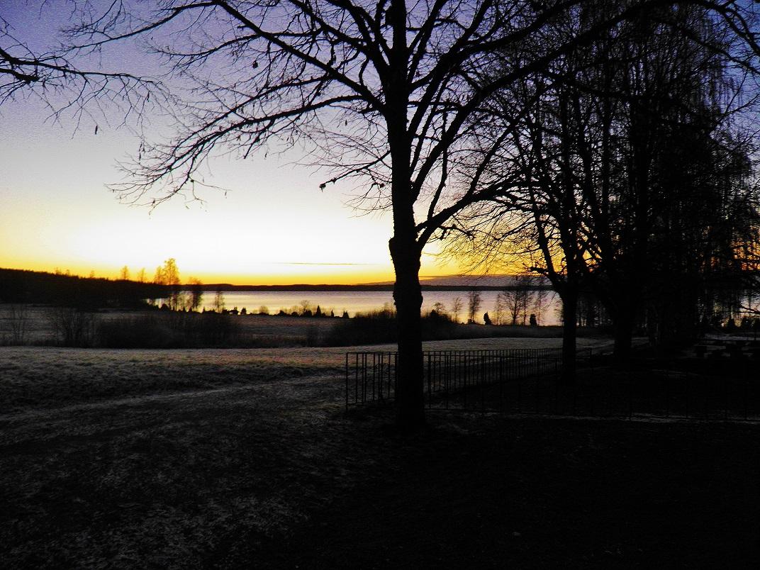 Nringslivsinfo 1 2008 - Lax kommun