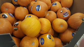 Pumpkins, glorious plump pumpkins!