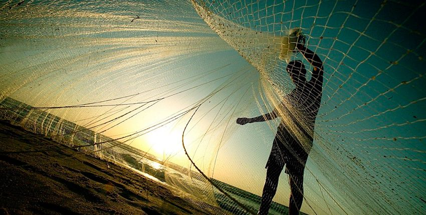 Resultado de imagen para Pesca y la Acuicultura