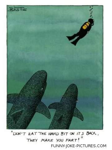 Funny Shark Bait Cartoon Fart Image