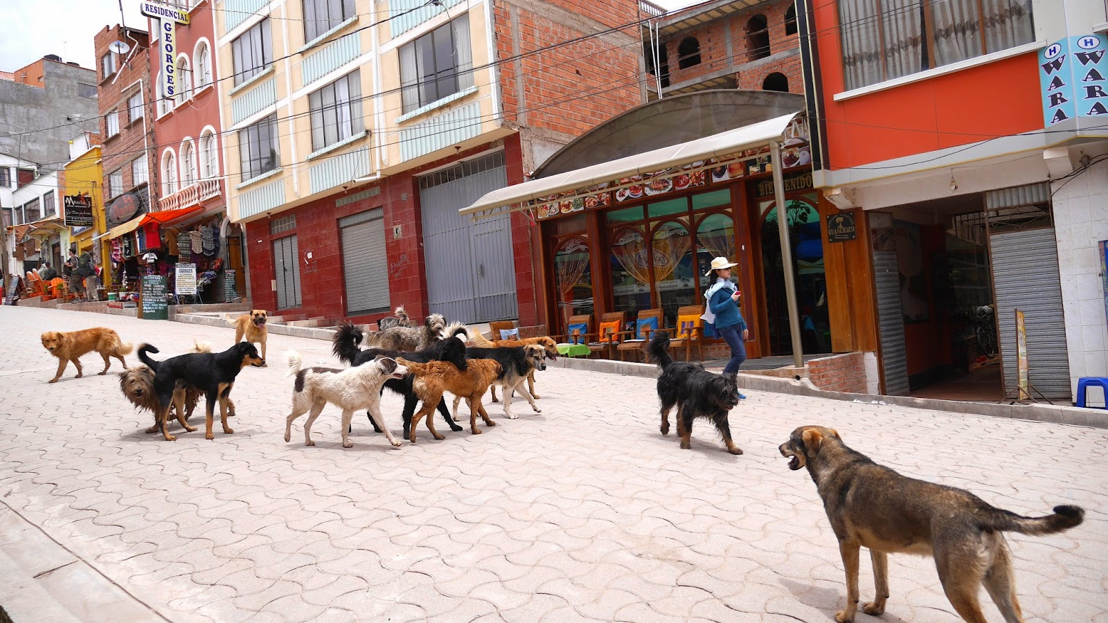 Shopping at Copacabana, Lake Titicaca, Bolivia