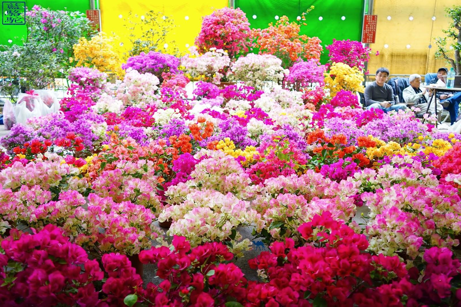 Le Chameau Bleu - Stand du marché au fleur de Taipei - Voyage Taiwan