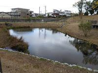 王仁公園 池