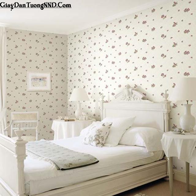 Giấy dán tường trang trí cho phòng ngủ người lớn