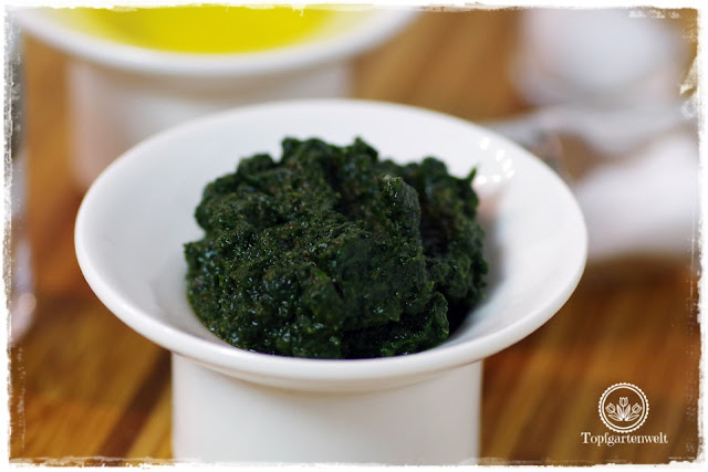 Einkochen Einwecken von Basilikumpaste Pesto Genovese - Foodblog Topfgartenwelt