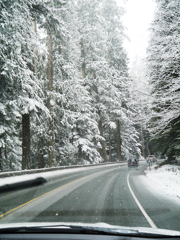 Snowy conditions on the Pacific Rim Highway en route to Tofino, BC