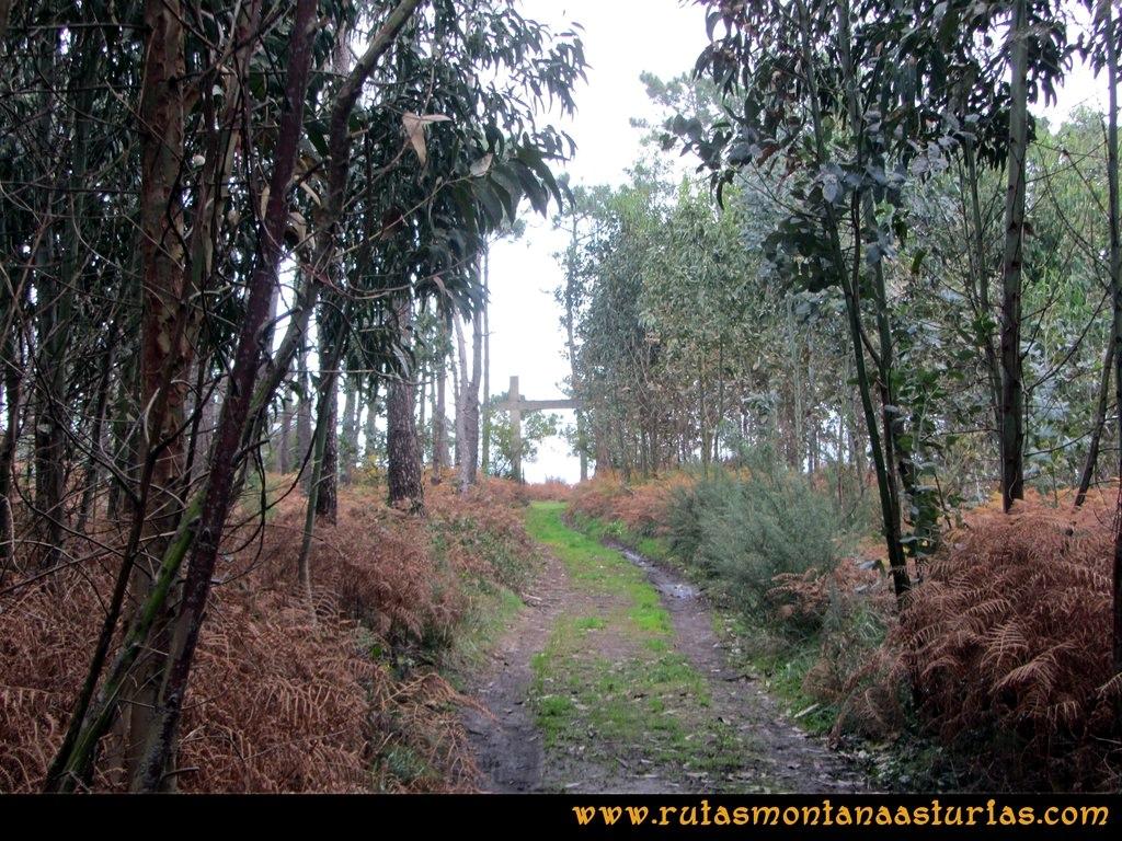 Ruta Artedo, Lamuño, Valsera: Camino del Cabo de Lamuño