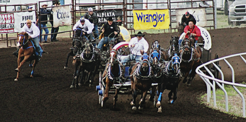 chuckwagon races medicine hat alberta