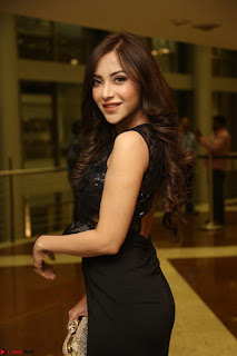 Angela Krislinzki in Transparent Black Gown at Rogue Movie Teaser Launch 1st March 2017 091.JPG