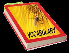Kids Vocabulary