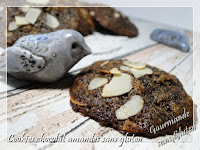 cookies aux chocolat sans gluten